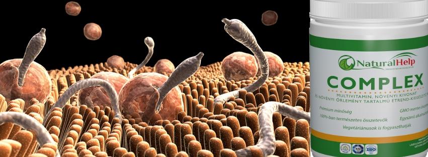 jó gyógymódok a paraziták ellen a szervezetben