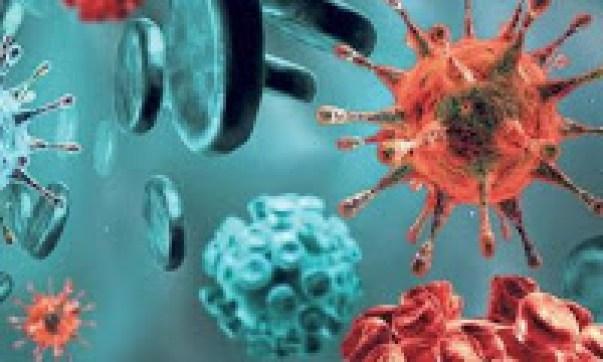 Ayurveda parazita kezelés - A férgek Ayurveda kezelése