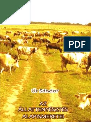 Bevezetés az állattanba   Digitális Tankönyvtár Mi a szarvasmarha galandférgének rendszere