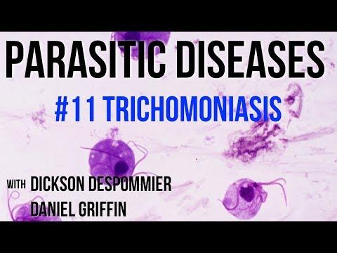 ascariasis immunitás