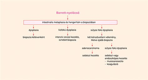 paraziták emberi viselkedés bőr alatti paraziták a bőr alatt